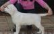 Lola 12 Wochen
