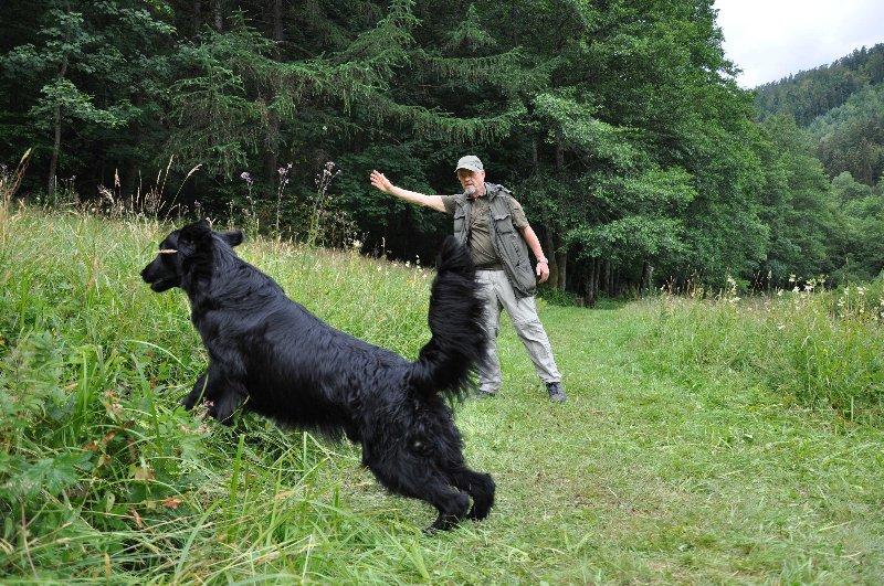 Mitch Training Juli 2011_18