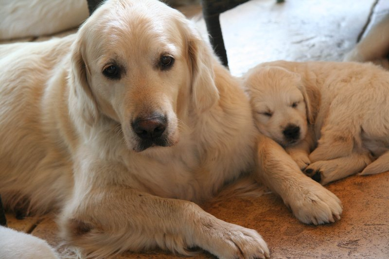 Siesta mit Mama