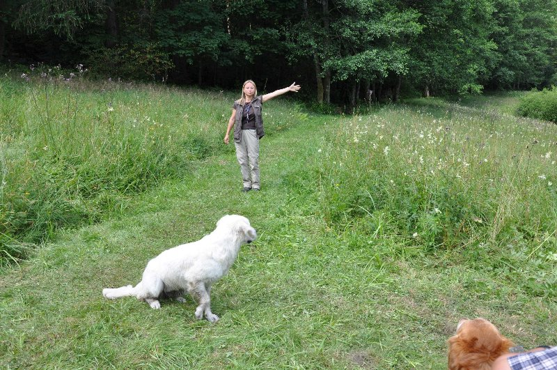 Mitch Training Juli 2011_2