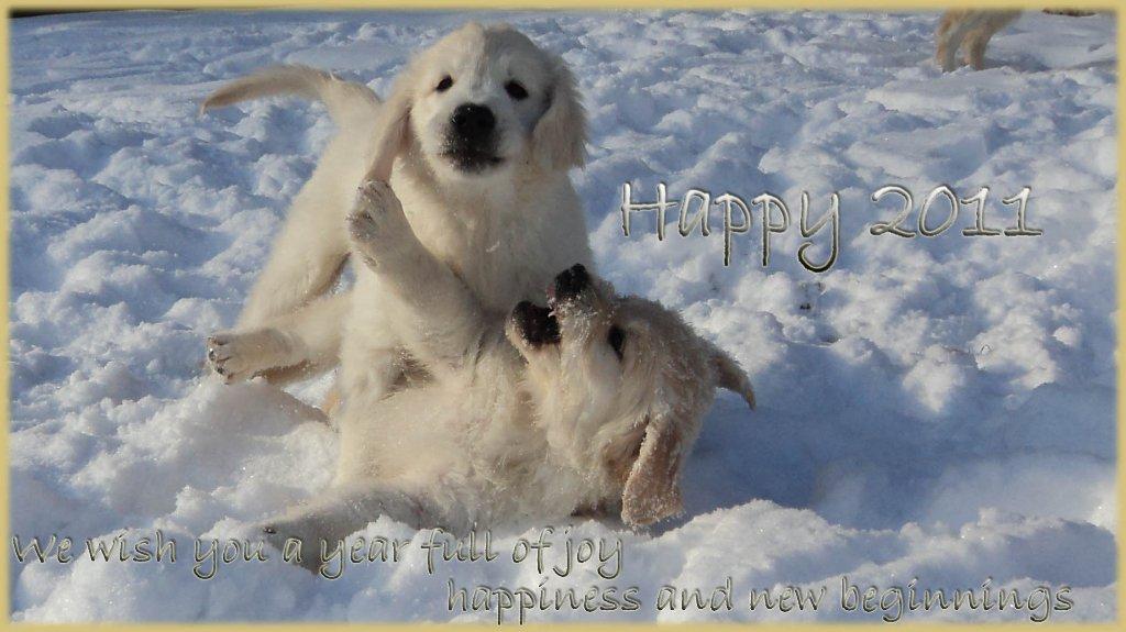 happy-2011_1024x575